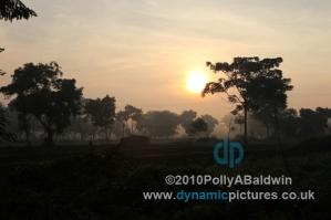 6am Field Base